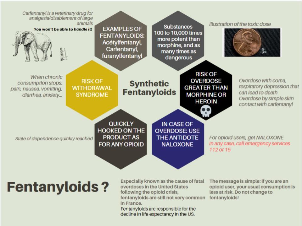 Fentanyloids scheme